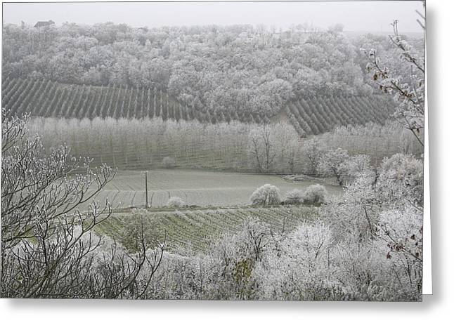 Midi Greeting Cards - Morning Frost In December At Greeting Card by Axiom Photographic