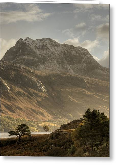 Slioch Greeting Cards - Morning Glory Greeting Card by Colette Panaioti
