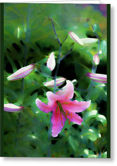 Floral Photographs Digital Greeting Cards - Morning Glow Greeting Card by Tom Prendergast