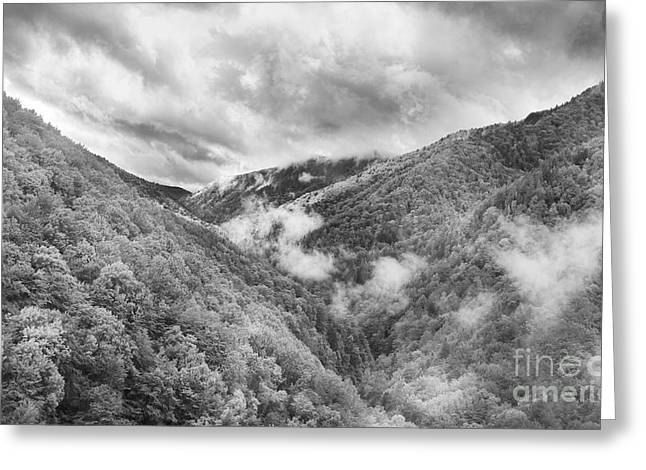 Carpathian Mountains Greeting Cards - Morning in Tarcu Mountains Greeting Card by Gabriela Insuratelu