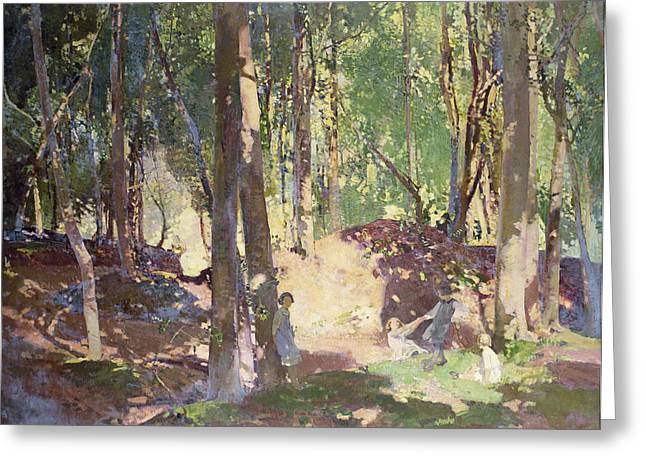 In The Shade Greeting Cards - Morning in the Woods Greeting Card by Harry Watson