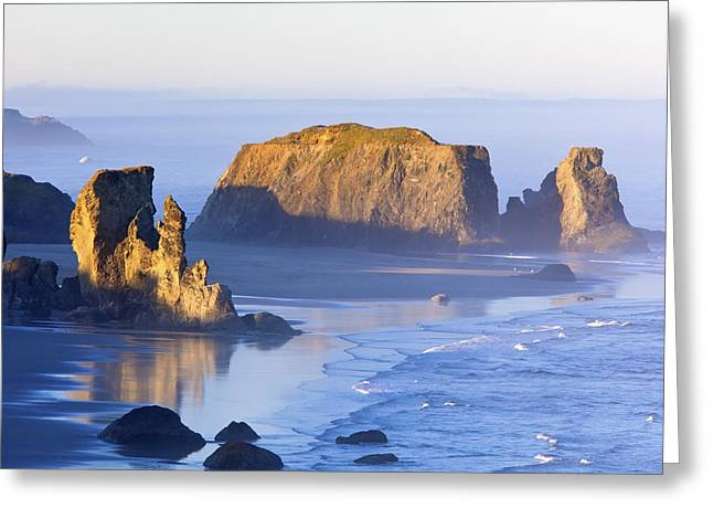 Morning Light Adds Beauty To Fog Greeting Card by Craig Tuttle