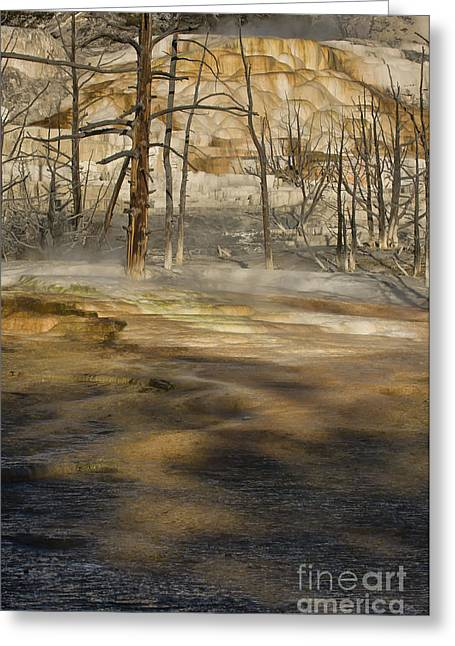 Mammoth Terrace Greeting Cards - Morning Light At Mammoth Terrace Greeting Card by Sandra Bronstein