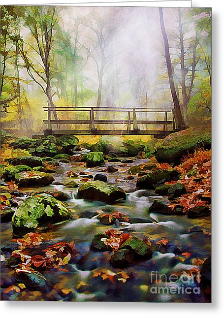 Photos Of Autumn Greeting Cards - Morning Light Greeting Card by Darren Fisher