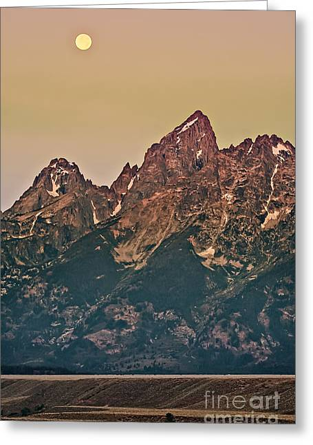Outlook Greeting Cards - Morning Light Greeting Card by Robert Bales