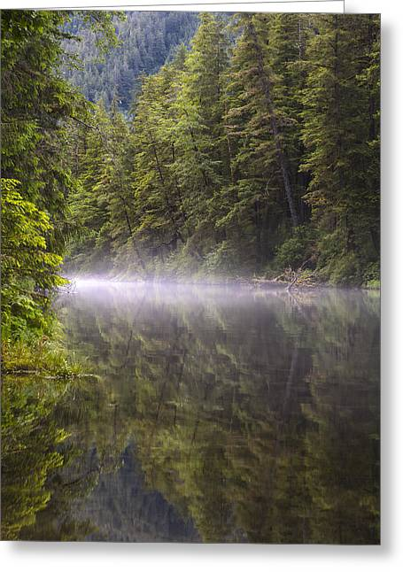 Prints Of Alaska Greeting Cards - Morning Mist Greeting Card by Tim Grams