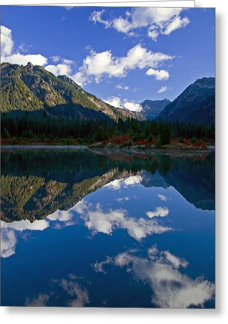 Pond Reflection Greeting Cards - Morning Musings Greeting Card by Mike  Dawson