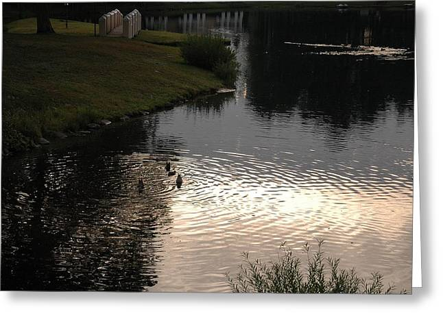 Reflections Of Sky In Water Greeting Cards - Morning on the Lake Greeting Card by Ellen Andrews