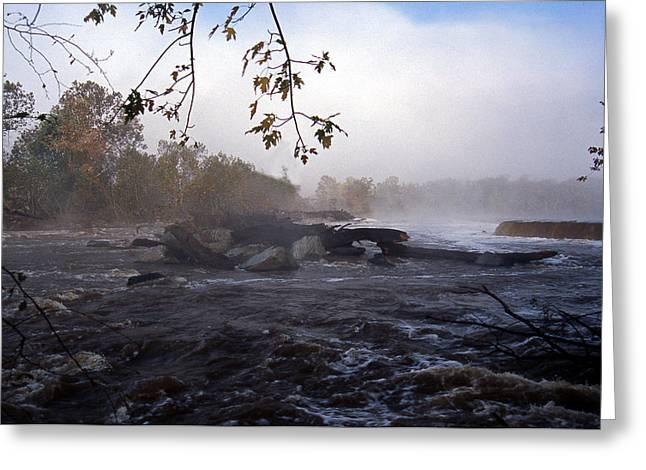Woodland Scenes Greeting Cards - Morning On The Potomac Greeting Card by Skip Willits