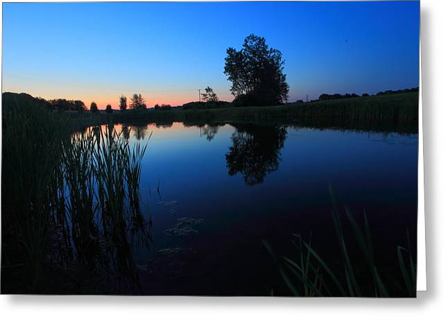 Morning Pond In Blue Greeting Card by Jiayin Ma