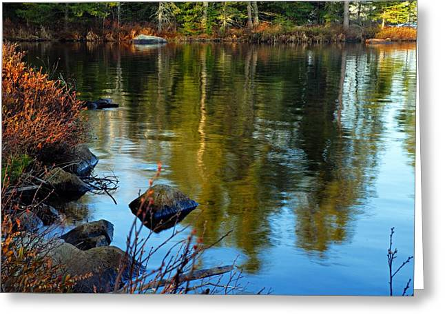 Boundary Waters Canoe Area Wilderness Greeting Cards - Morning Reflections On Chad Lake Greeting Card by Larry Ricker
