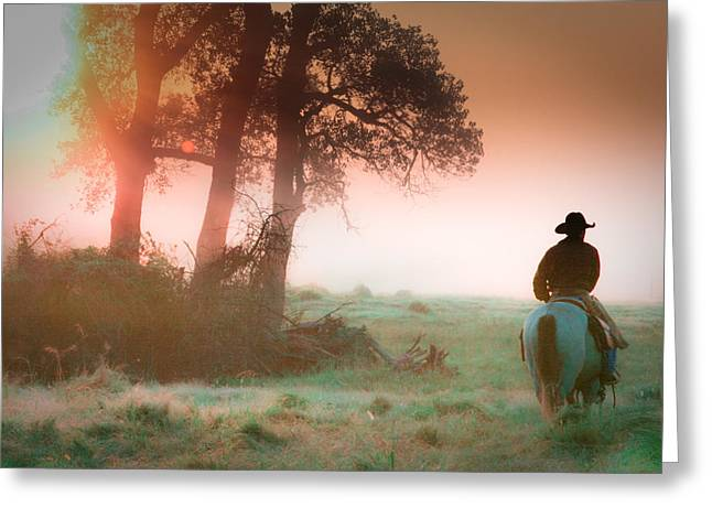 Cattle Drive Greeting Cards - Morning solitude Greeting Card by Toni Hopper