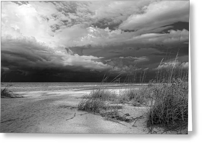 Anna Maria Island Greeting Cards - Morning Storm Greeting Card by Jim Dohms