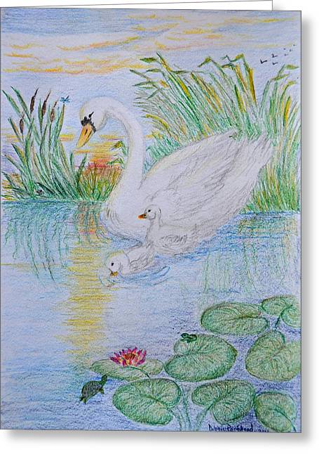 Morning Swim I  Original Colored Pencil Drawing Greeting Card by Debbie Portwood
