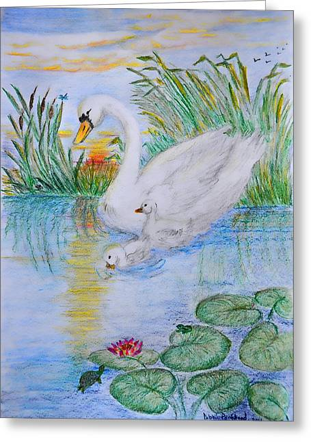 Water Lilly Drawings Greeting Cards - Morning Swim II  Edited Original Art Greeting Card by Debbie Portwood