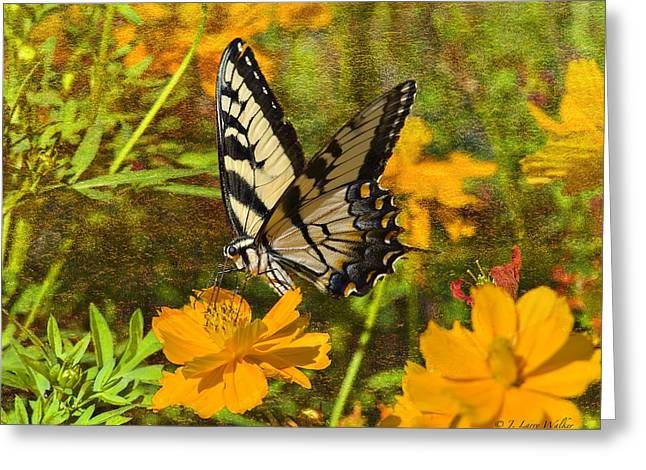 Butterfly Digital Art Greeting Cards - Morning Tiger Swallowtail Greeting Card by J Larry Walker