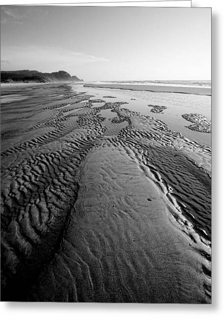 Sand Patterns Greeting Cards - Morning Walk Greeting Card by Bonnie Bruno