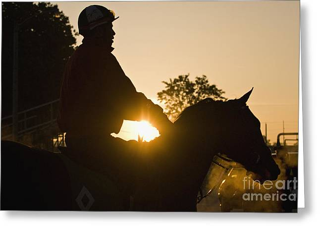 Morning Race Greeting Cards - Morning Workout - D007929 Greeting Card by Daniel Dempster