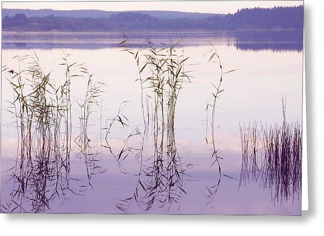Morning Zen. Pearly Moments of Sunrise. Ladoga Lake. Northern Russia Greeting Card by Jenny Rainbow