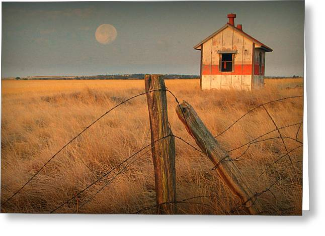 Mornings Calm Greeting Card by AL  SWASEY