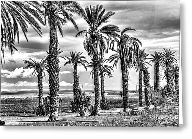 Morocco Landscape II Greeting Card by Chuck Kuhn