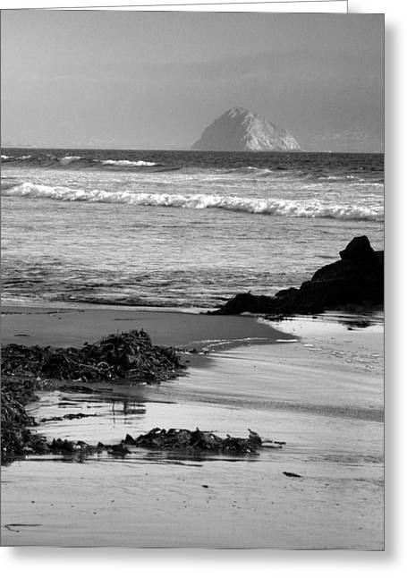 California Ocean Photography Greeting Cards - Morro Bay Shoreline V Greeting Card by Steven Ainsworth
