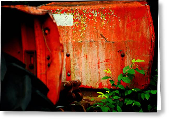 Red Photographs Drawings Greeting Cards - Moss and Rust V Greeting Card by Toni Hopper