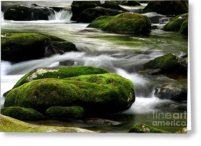 Babbling Greeting Cards - Mossy River Rocks Greeting Card by Gary L Suddath