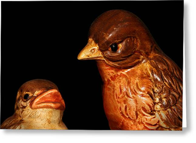 Baby Bird Greeting Cards - Mother And Baby Robin Birds Greeting Card by Tracie Kaska