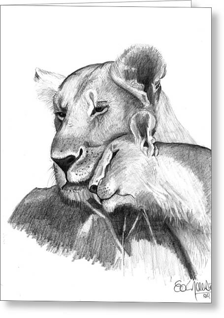 Love The Animal Drawings Greeting Cards - Mother and The Lion Baby Greeting Card by Eduardo Crowder