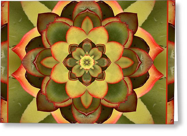 Hens And Chicks Photography Greeting Cards - Mother Lotus Greeting Card by Bell And Todd