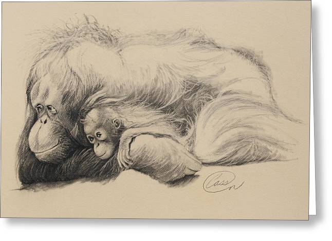 Orangutan Drawings Greeting Cards - Mother Love Greeting Card by Albert Casson