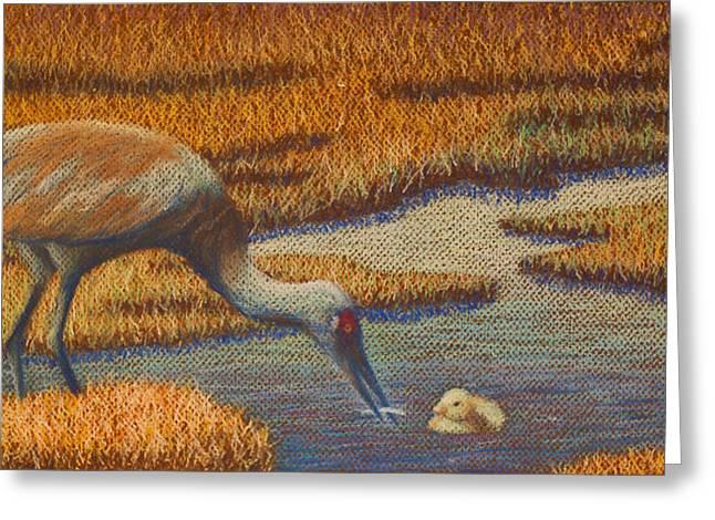 Sandhill Cranes Pastels Greeting Cards - Mother Sandhill Crane Greeting Card by Thomas Maynard