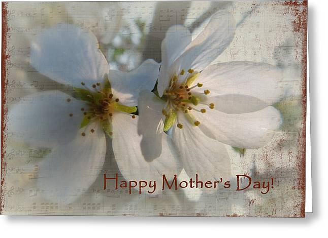Crabapple Cards Greeting Cards - Mothers Day Blossoms Greeting Card by Cindy Wright