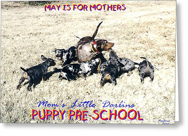 Drug Sniffing Dog Greeting Cards - Mothers Day Greeting Card by Poni Trax