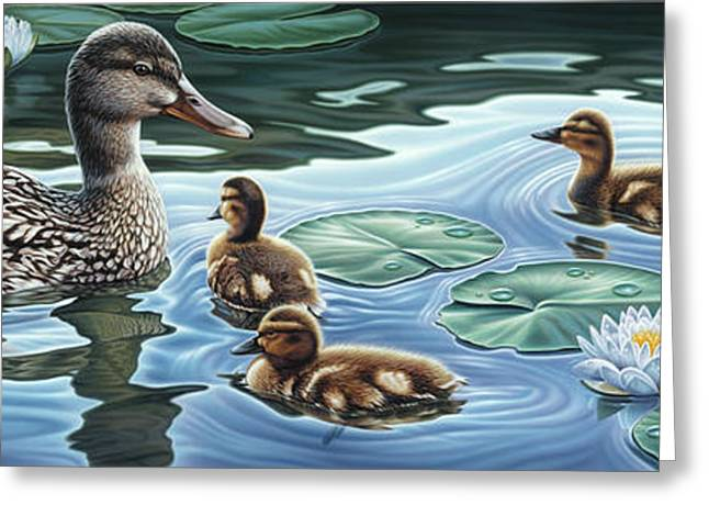 Baby Mallards Paintings Greeting Cards - Mothers Watchful Eye Greeting Card by Steven Tetlow