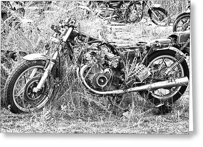 Motorcycle Graveyard Greeting Card by Douglas Barnard