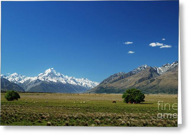 Best Sellers -  - Grazing Snow Greeting Cards - Mount Cook Great Scenic Greeting Card by Natapong Paopijit