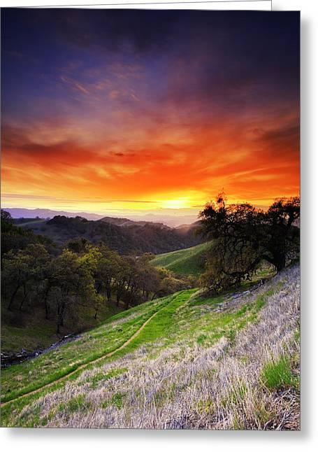 Walnut Tree Photograph Greeting Cards - Mount Diablo Sunset 2. Greeting Card by Laszlo Rekasi