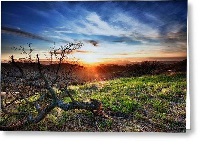 Walnut Tree Photograph Greeting Cards - Mount Diablo Sunset Greeting Card by Laszlo Rekasi