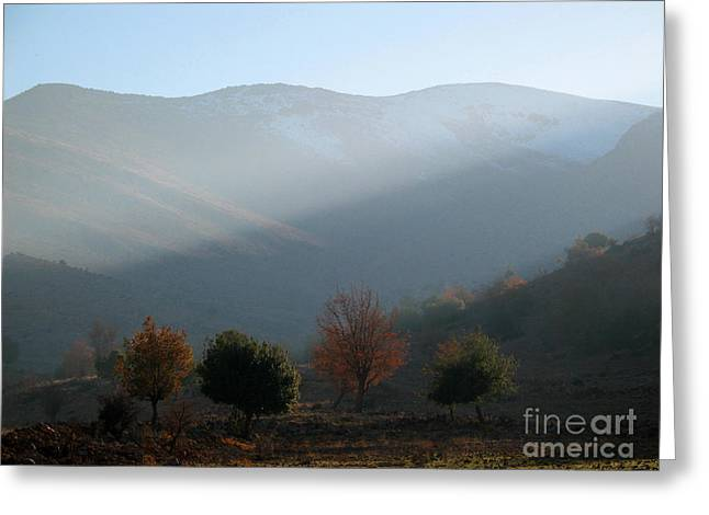 Issam Hajjar Greeting Cards - Mount Hermon in fall Greeting Card by Issam Hajjar