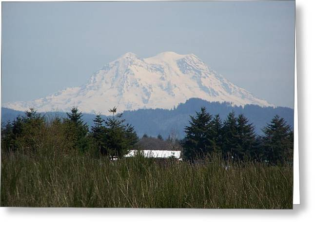 Pacific Northwest Pyrography Greeting Cards - Mount Rainier Again Greeting Card by Laurie Kidd