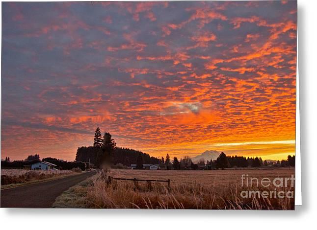 Mount Rainier Dawn Greeting Card by Sean Griffin