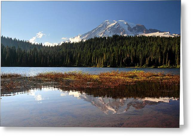 Paradise Meadow Greeting Cards - Mount Rainier Reflection Lake Greeting Card by Pierre Leclerc Photography