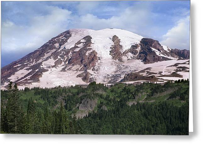 Mount Rainier With Coniferous Forest Greeting Card by Tim Fitzharris