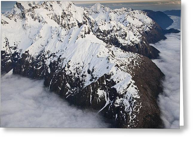 Mount Tutoko At Dawn In Fiordland Np Greeting Card by Colin Monteath