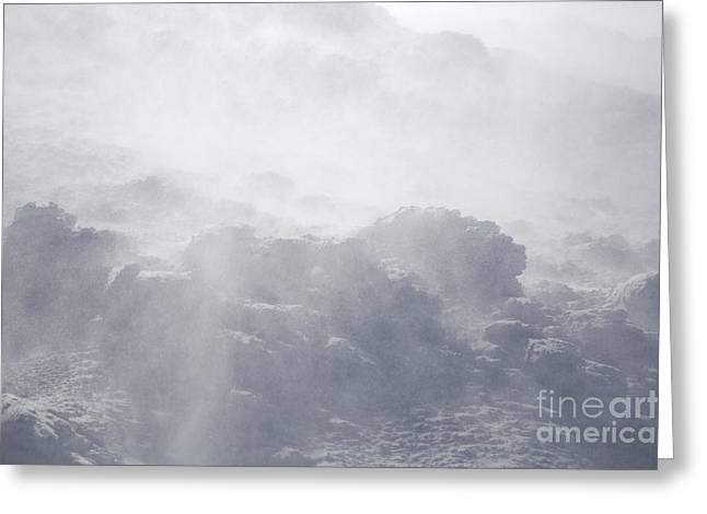 Blowing Snow Greeting Cards - Mount Washington New Hampshire - Whiteout Greeting Card by Erin Paul Donovan
