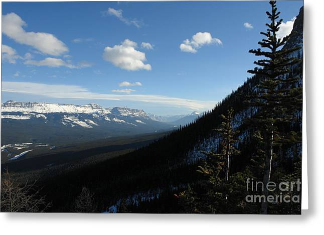 Morning In A Pine Forest Greeting Cards - Mountain Corridor Greeting Card by Greg Hammond