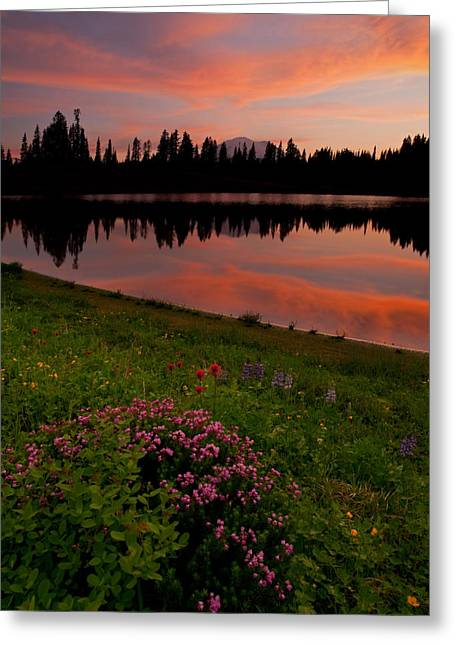 Mt Greeting Cards - Mountain Heather Reflections Greeting Card by Mike  Dawson