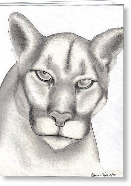 Refurbished Photos Drawings Greeting Cards - Mountain Lion Greeting Card by Rick Hill